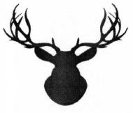 Deer Dash 5K